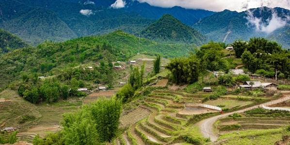 Vietnam Sapa rijstvelden
