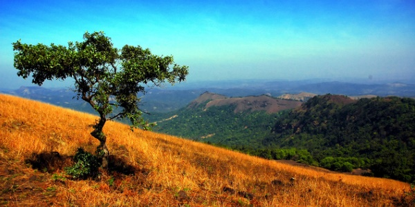natuur-karnataka-india