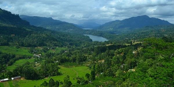 Landschap Sri Lanka