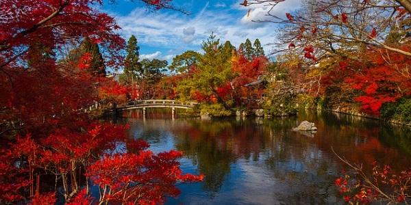 Omgeving Kyoto Japan