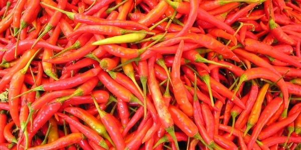 Chilli pepers