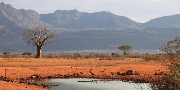 Keniaans landschap